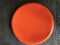 Orange Balance 55cm Disc