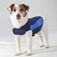 ThunderShirt for Dog Polo Blue