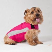 ThunderShirt for Dog - Polo Pink